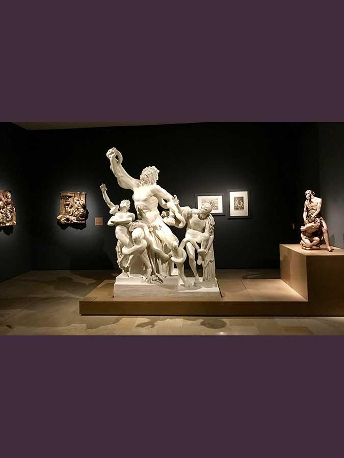 Laocoonte y sus hijos (5)