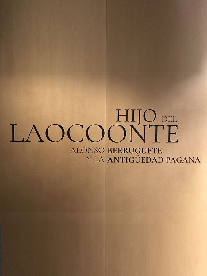 Exposición Hijo del Laocoonte. Alonso Berruguete y la Antigüedad pagana