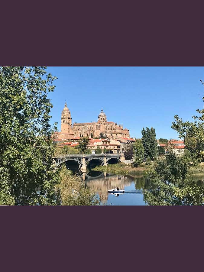 Detalle vista Salamanca