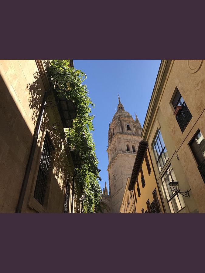 Torre de la catedral Nueva