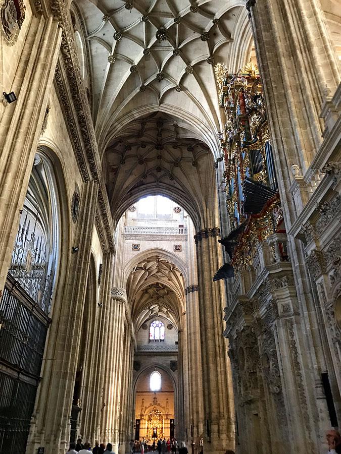 Catedral Nueva. Interior