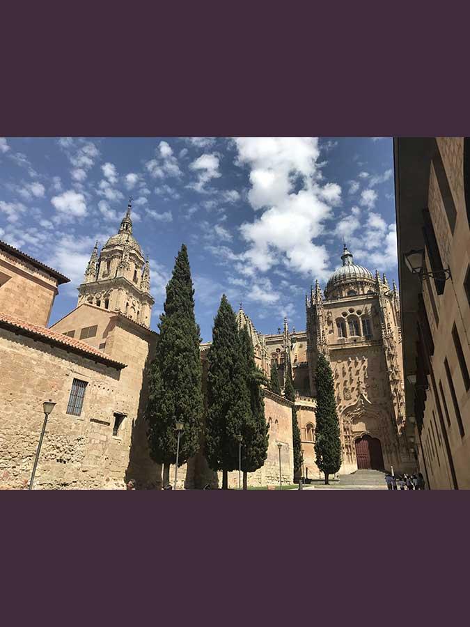 Catedral Vieja. Salamanca