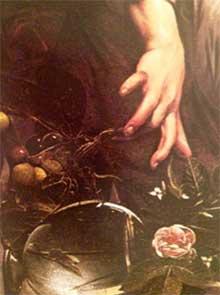 Muchacho mordido por un lagarto. Detalle. Caravaggio. 220. Medicina Piel y arte. Una sección de Olga Marqués Serrano
