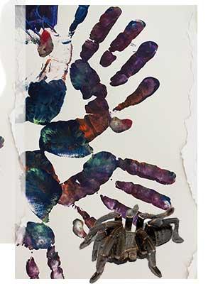 Tarántula. Poema de Manolo Romero. Medicina, piel y arte